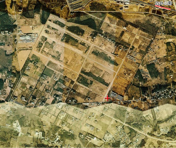 オルソ松山飛行場全図.PNG